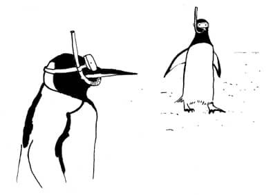 Antarctique - Mkf éditions